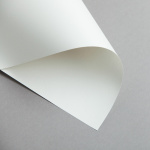 Clairefontaine Trophée Pastell DIN A4 | 160 g/m² | Grau
