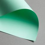 Clairefontaine Trophée 120 g - Sonderposten DIN A4 | Naturgrün