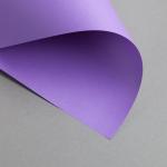 Clairefontaine Trophée Intensiv DIN A4 | 80 g/m² | Violett