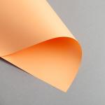 Clairefontaine Trophée Pastello DIN A4 | 80 g/m² | Mandarino