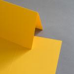 Colorplan Karten 169 x 120 mm hochdoppelt Curry