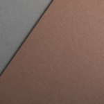 Colorplan 270 g/qm DIN A4 Lederbraun