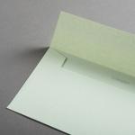 Colorplan Couverts DIN lang Pistaziengrün