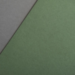 Colorplan 135 g/qm DIN A4 Olivgrün