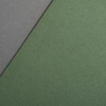 Colorplan 270 g/qm DIN A4 Olivgrün