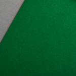 Colorplan 135 g/qm DIN A4 Billardgrün
