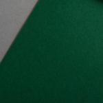 Colorplan 135 g/qm DIN A4 Tannengrün