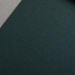 Colorplan 135 g/qm DIN A4 Dunkelgrün