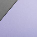 Colorplan 135 g/qm DIN A4 Lavendel