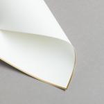 HS Luxury Papers - Karten A6 einfach gold gerändert | 25 Stück