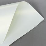 Metallics schimmernd 120 g DIN A4 | Creme mit Goldschimmer