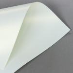 Metallics schimmernd 160 g DIN A3 | Creme mit Goldschimmer