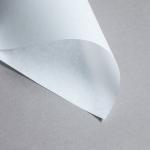 Lucida Transparent Strukturiert 160 g DIN A4 | Pergament Weiss