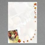 Bunte Blätter DIN A4 100 Blatt