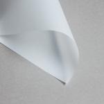 Canson Transparent Klar DIN A4 | 110 g/m²