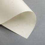 Pergament 190 g DIN A3 | Altweiss
