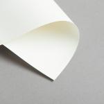 Karten Elfenbein DIN Lang einfach