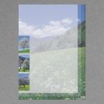Wiesenlandschaft A4