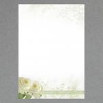 Weisse Rosen A4